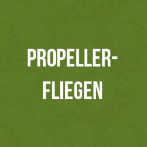 Propellerfliegen